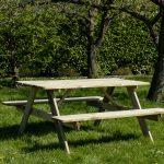 Beste Prijsshop Picknicktafel Grenen Basic 150
