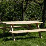 Beste Prijsshop Picknicktafel Douglas 180